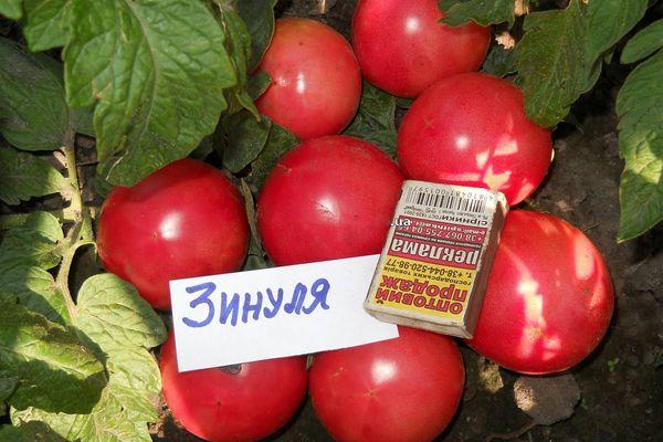 """Томат """"калинка-малинка"""": описание сорта, фото, выращивание вкусных помидоров русский фермер"""