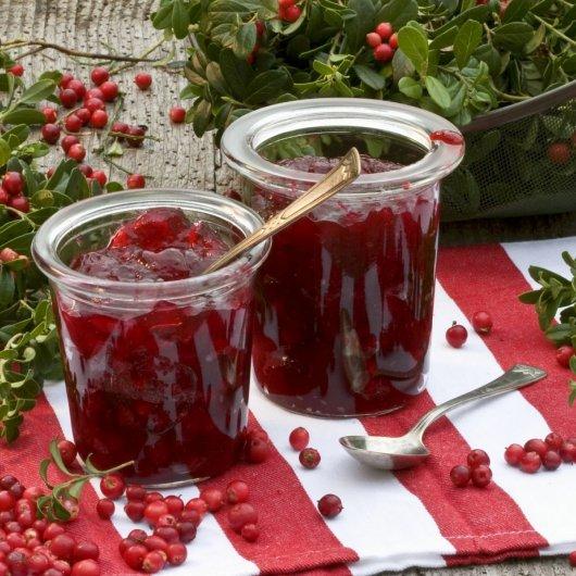 Ягоды брусники - полезные свойства и противопоказания, как сохранить на зиму с пользой