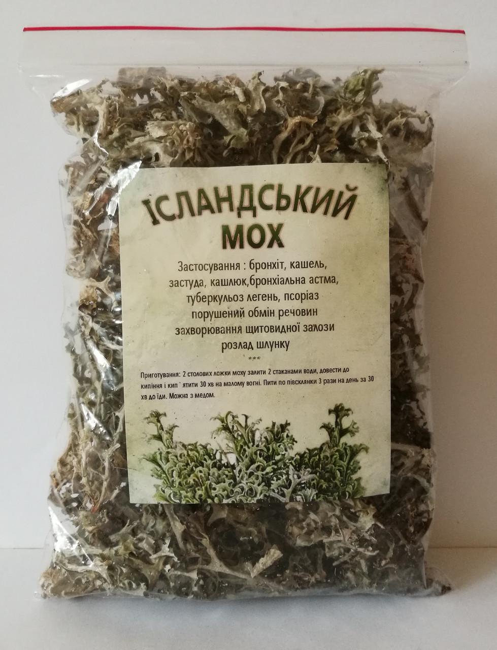 Ирландский мох: лечебные свойства, применение, жемчужный в таблетках, как использовать морской для похудения, фото