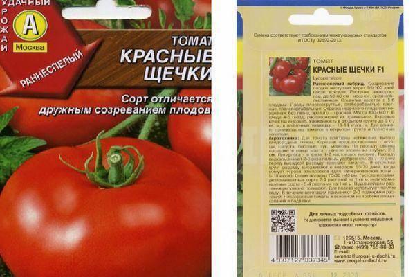 «розовые щечки»: описание сорта томатов, характеристики и отзывы садоводов