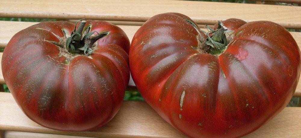 Сорта черных томатов с фото и описанием