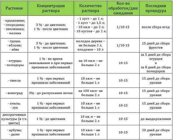 Обработка огурцов — советы по уходу и правила опрыскивания разных сортов огурцов (видео + фото)