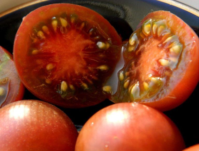 Томаты финик: красный, желтый, сибирский – описание и характеристика сорта