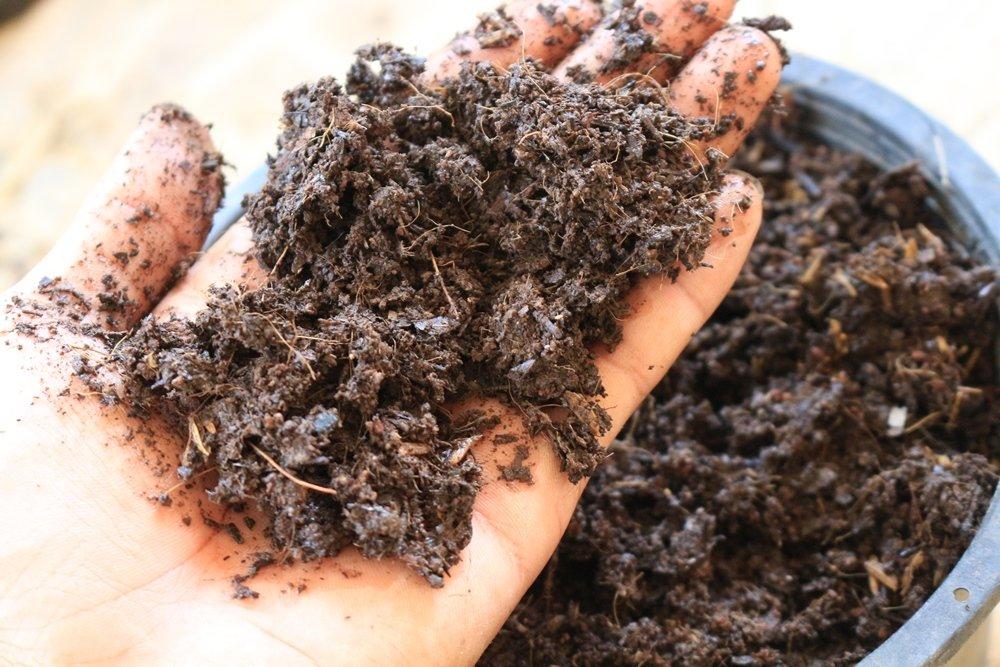 Что такое компост, как правильно сделать компостную кучу: компоненты, приготовление своими руками