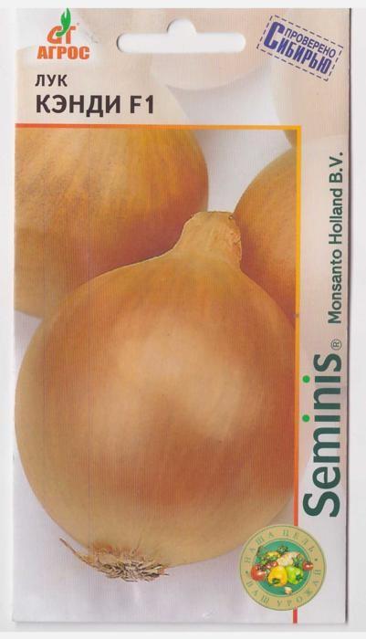 Лук севок: что это такое, голландские сорта и их описание, характеристика вкусовых качеств и урожайности, фото луковиц и особенности выращивания и посадки