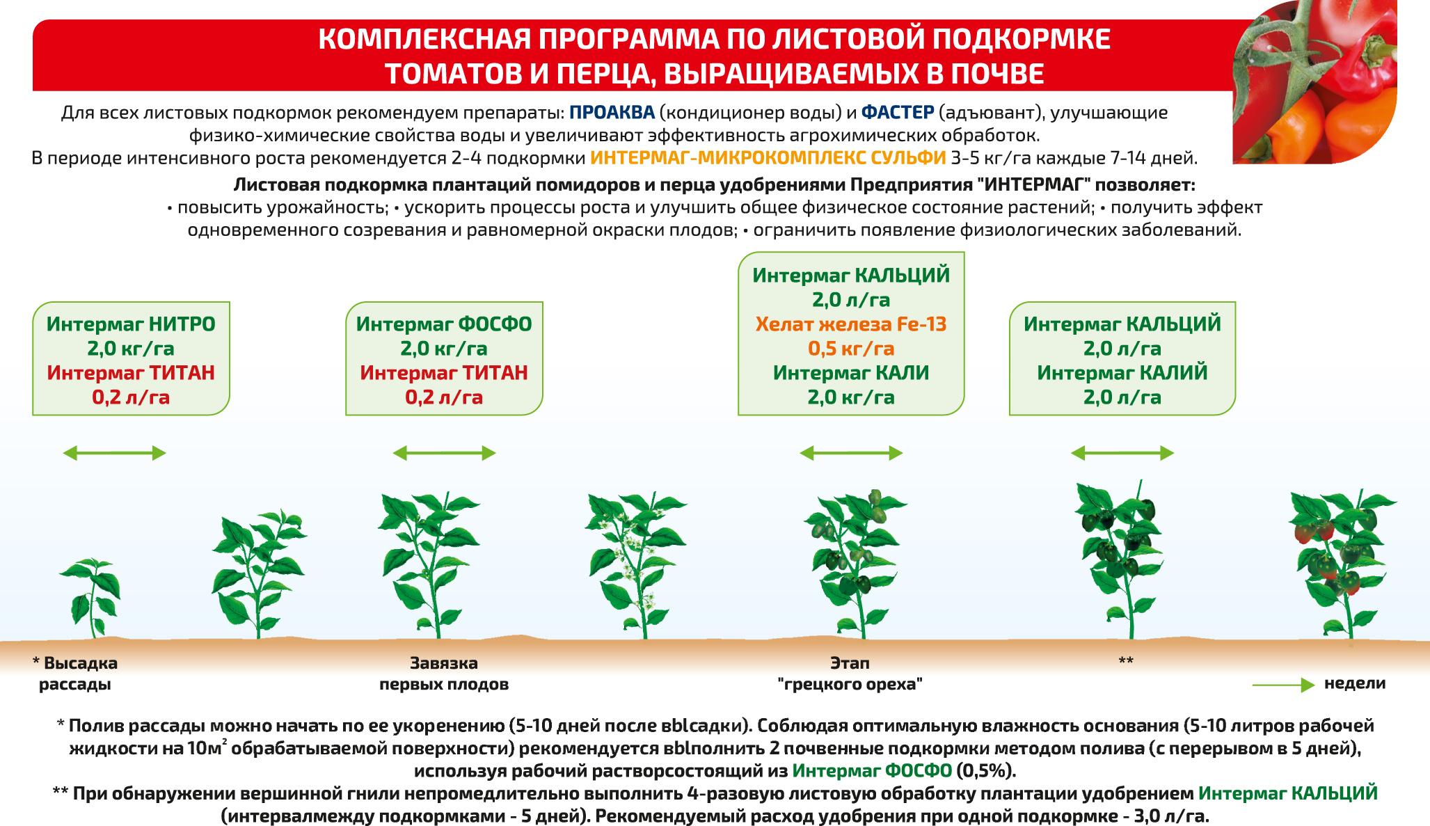 О подкормке ирисов после цветения (чем хорошо удобрять растения в июле)