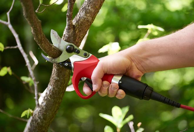Как выбрать садовый сучкорез секатор на длинной ручке: преимущества, нюансы использования, правила выбора