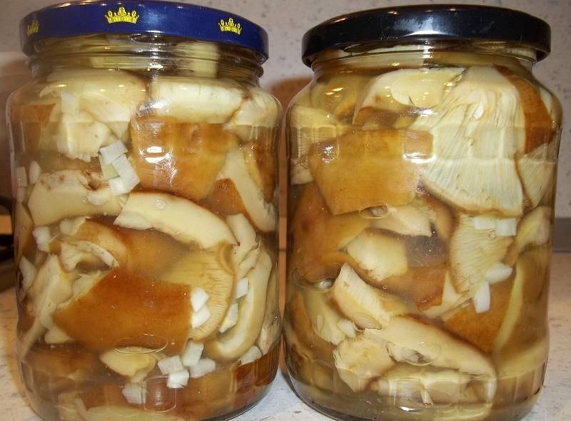Самые лучшие рецепты засолки грибов: простые и вкусные способы как солить лесные грибы в банках, кастрюле, ведре и под гнетом в домашних условиях. какие грибы подходят для засолки, и сколько дней солят грибы? | qulady