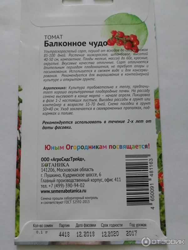 """Балконные помидоры - """"балконное чудо"""", описание комнатного сорта томатов с фото русский фермер"""