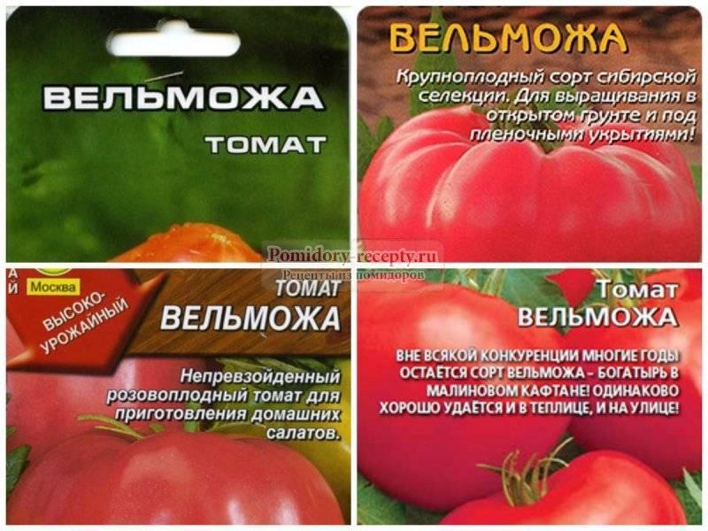 Особенности плодов и выращивание урожайного и раннего сорта томата хан
