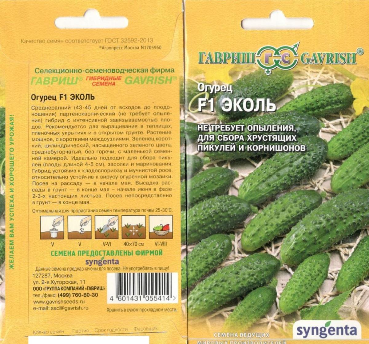 Огурцы эколь f1: характеристика и описание сорта, фото, отзывы