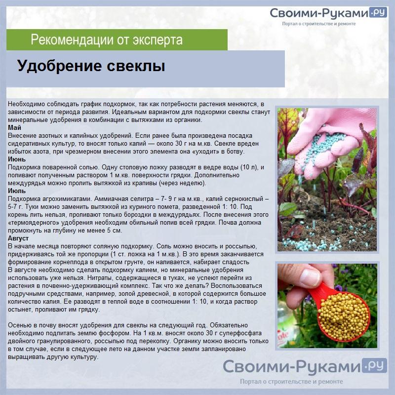 Азотные удобрения: разновидности, особенности применения