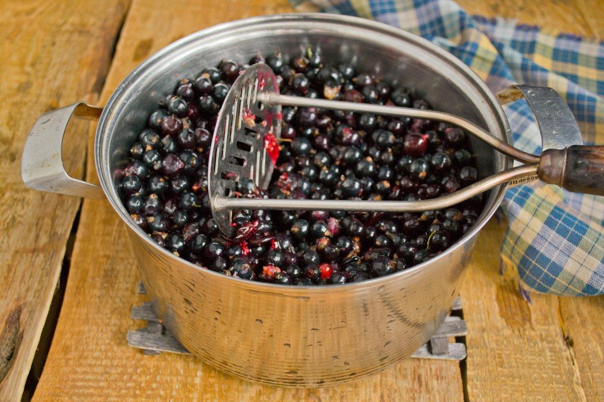 Как быстро собрать смородину и определить спелость ягод