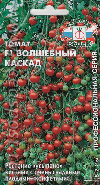 Томат ультраскороспелый – характеристика и описание сорта, фото, урожайность, отзывы огородников