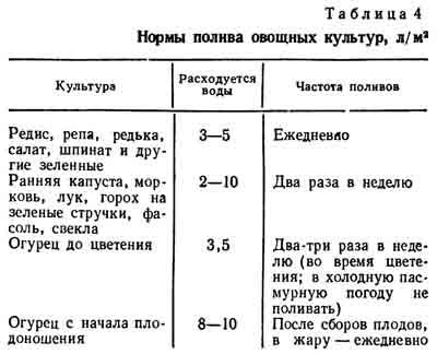 ✅ все о поливе лука после посева в открытый грунт: нужно ли поливать, и как часто - tehnomir32.ru