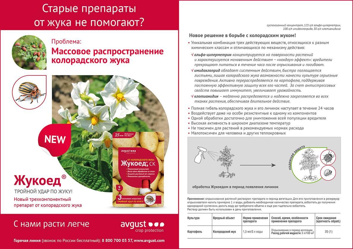 Препарат от колорадского жука жукоед: описание, инструкция по применению, отзывы