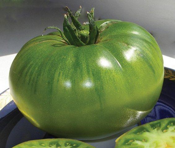 Томат «изумрудное яблоко»: описание сорта помидоров, правила выращивания