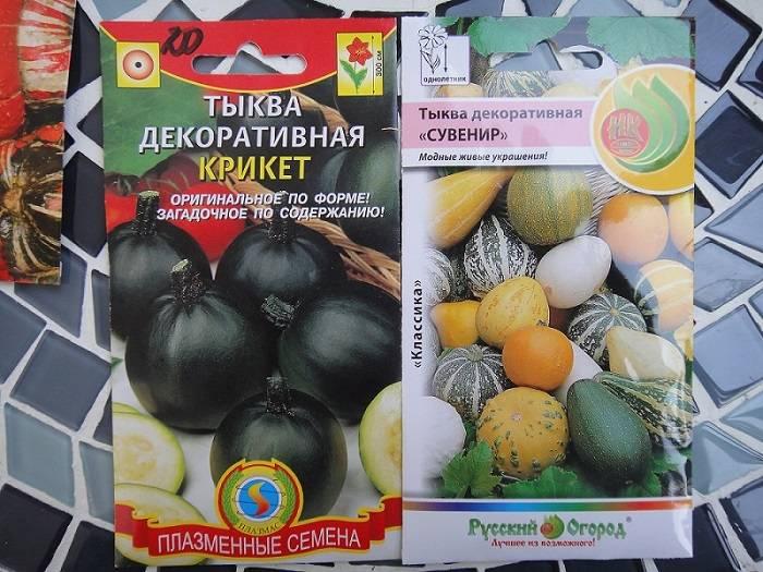Сорта тыквы