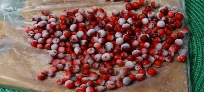 Заготовки из брусники на зиму – 17 рецептов вкусных и полезных закаток - будет вкусно! - медиаплатформа миртесен