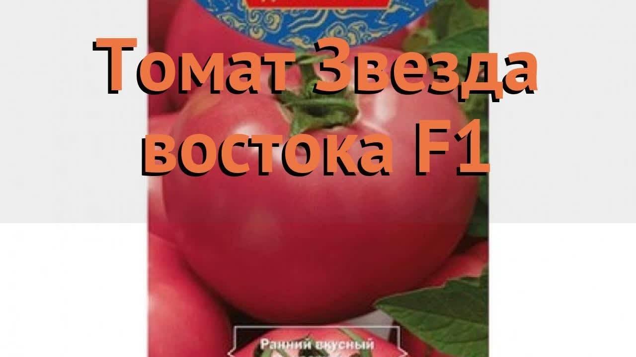 Томат звезда востока характеристика и описание сорта maksiflora.ru