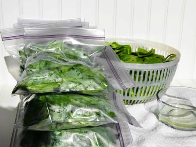 Заморозка шпината на зиму — рецепт, как заготовить и хранить зелень в домашних условиях