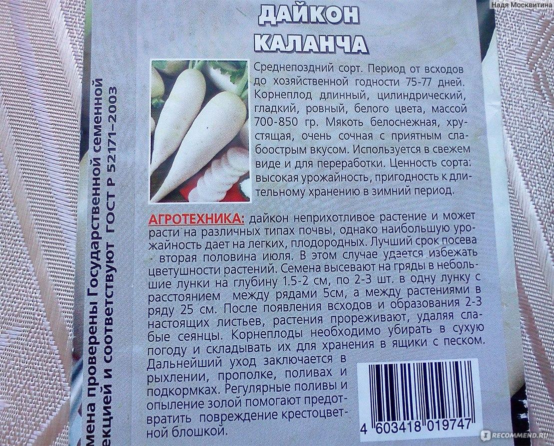 Дайкон – «гигантское» удовольствие. описание, выращивание, сроки посадки. фото — ботаничка.ru