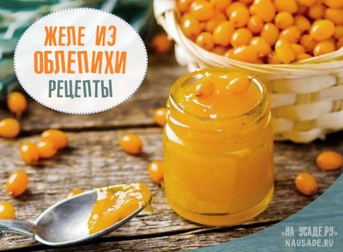 ᐉ желе из облепихи в домашних условиях - рецепт на зиму, с сахаром и без, видео - my-na-dache.ru