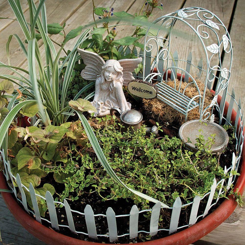 Мини-сад в горшке (45 фото): садик своими руками, растения, цветы для миниатюрного, цветочные композиции камней