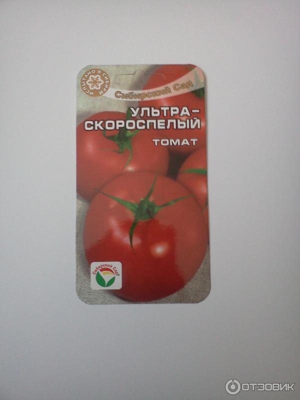 Томат ранняя любовь: описание сорта помидор, характеристика и выращивание, фото и видео