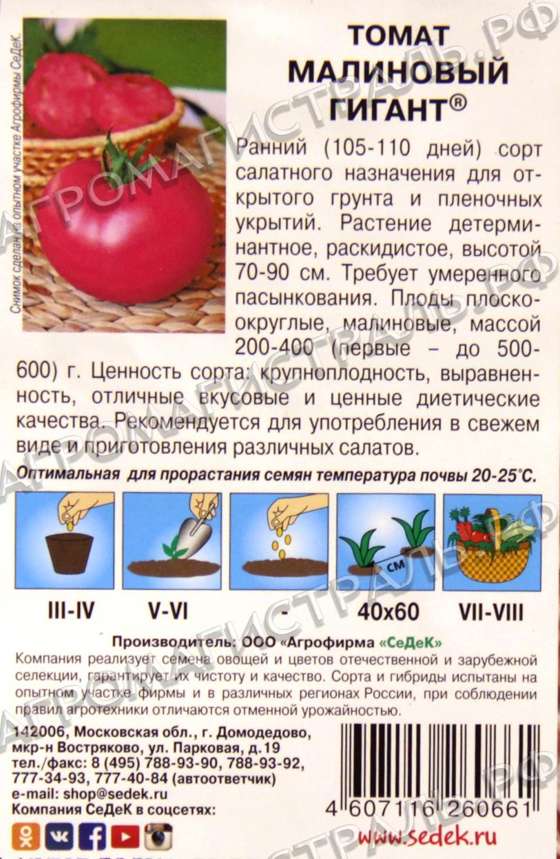 Салатный сорт с мясистой мякотью — томат «малиновый рассвет»