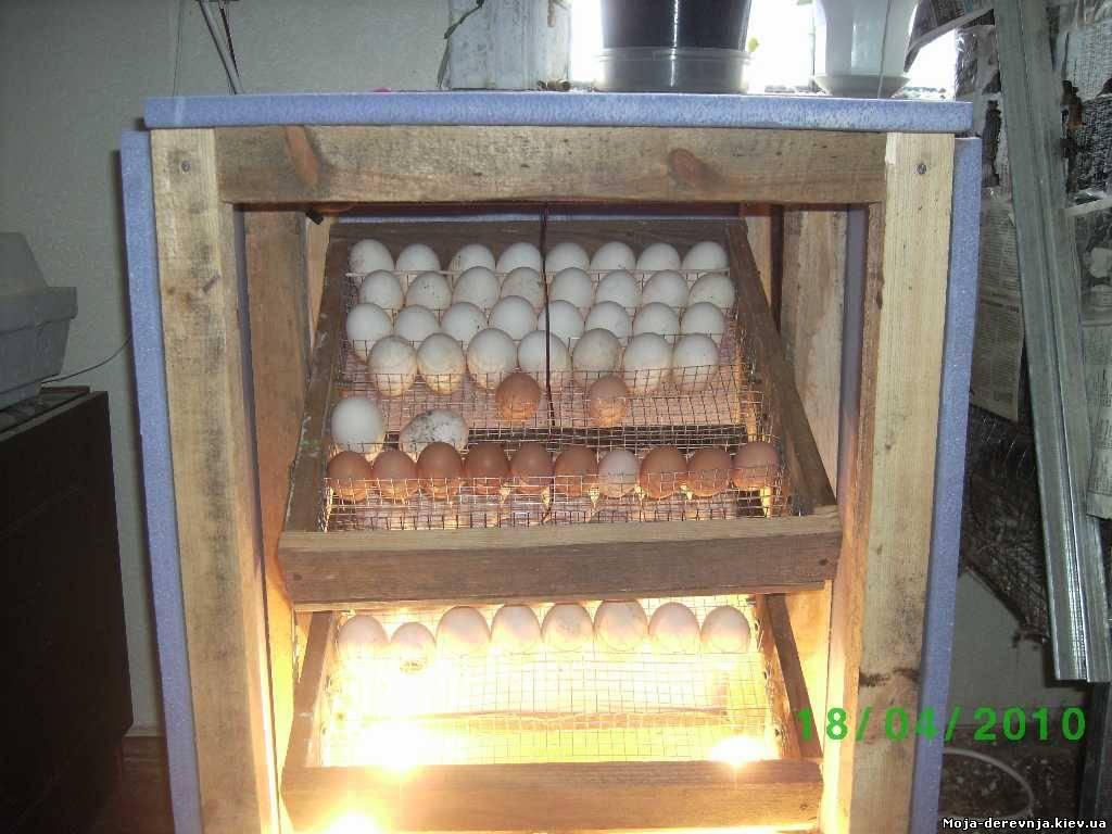 Инкубатор своими руками описание технологии изготовления. инкубаторы для куриных яиц: обзор существующих видов и особенности изготовления своими руками