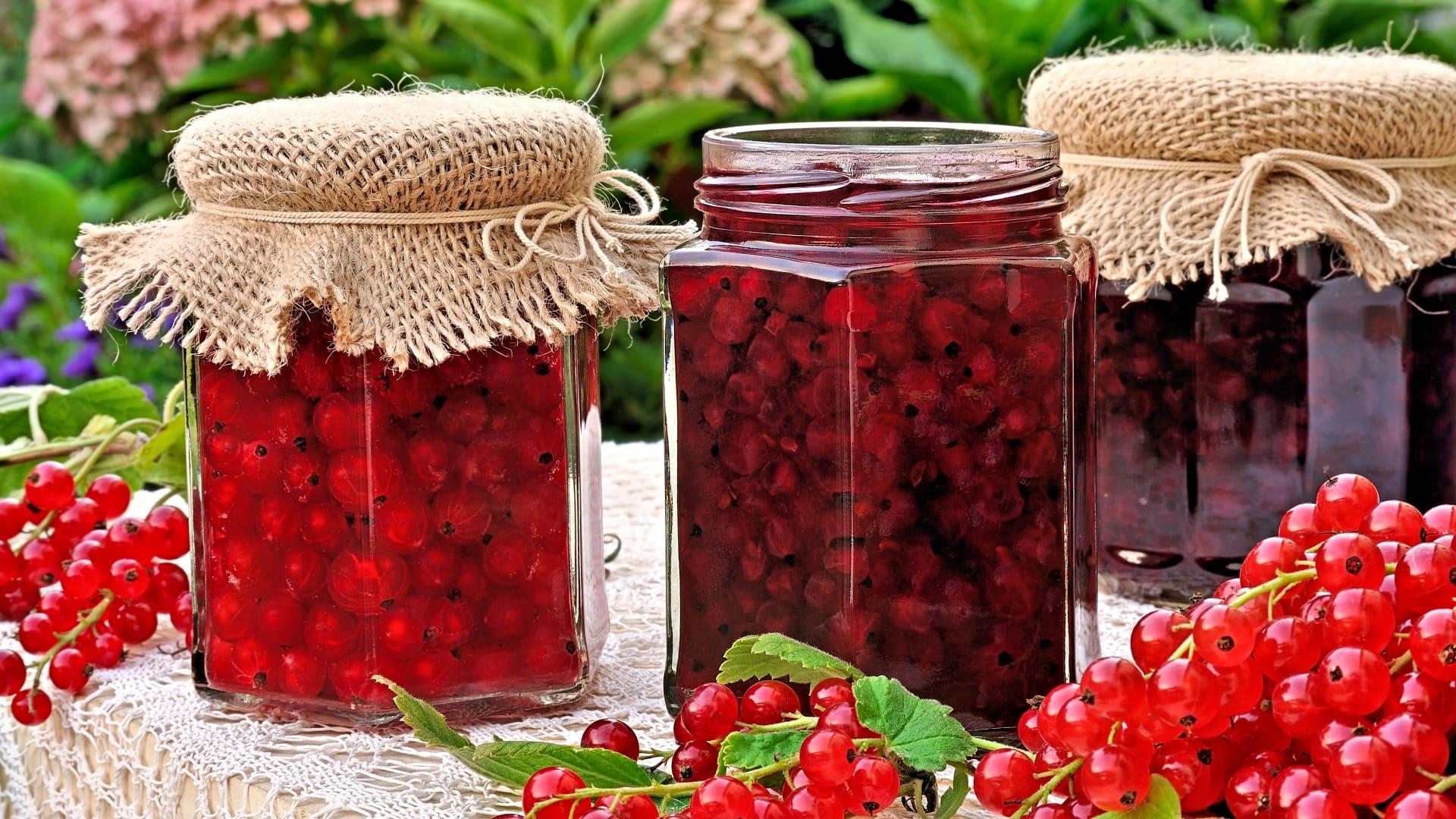 Красная смородина: приготовить на зиму, 17 лучших рецептов заготовок