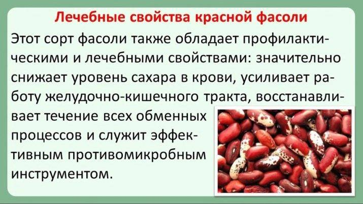 Польза и вред красной фасоли для организма человека: для женщин, мужчин и детей