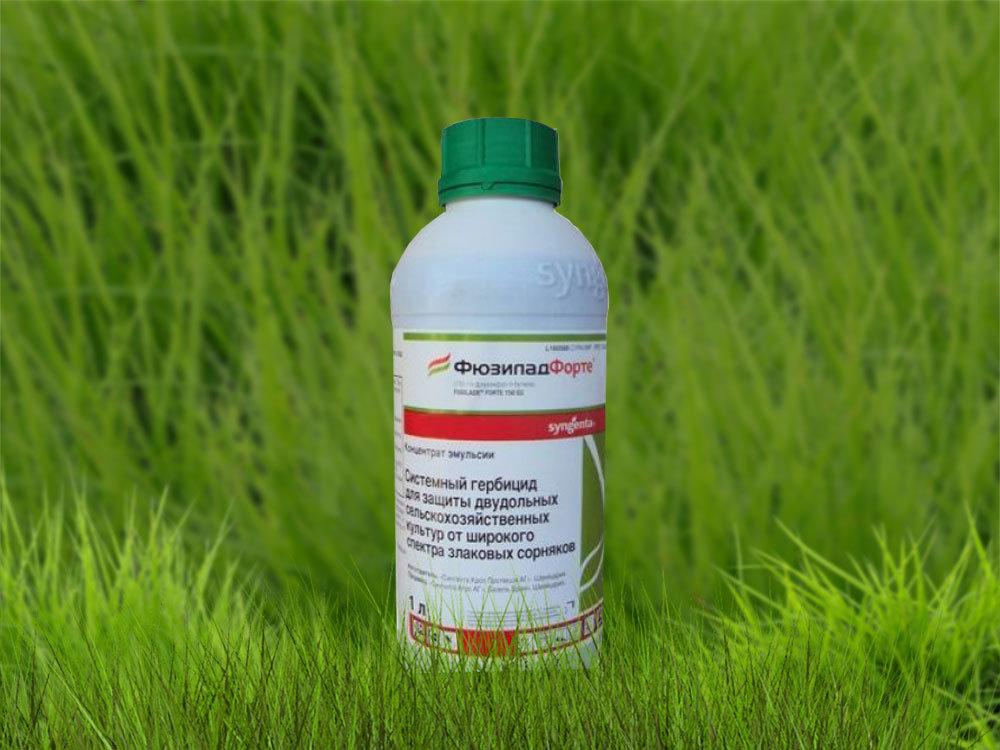 Гербициды от сорняков сплошного действия для дачи: обзор наиболее эффективных препаратов