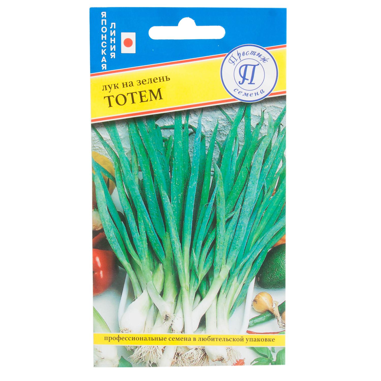 Лук на зелень из семян: как посадить и вырастить