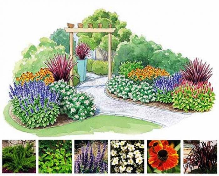 Цветник на даче: правила размещения растений в цветниках