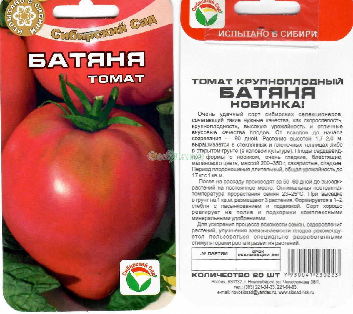 Томат батяня - характеристика и описание сорта, фото русский фермер