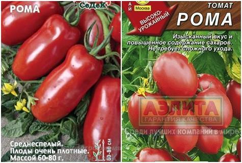 Отзывы и характеристики томата рома