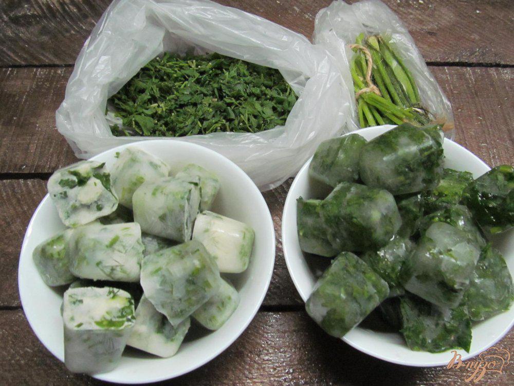 Как сохранить лук зеленый на зиму в домашних условиях: свежим, сушеным, замороженным, в холодильнике, на балконе и т.д.?