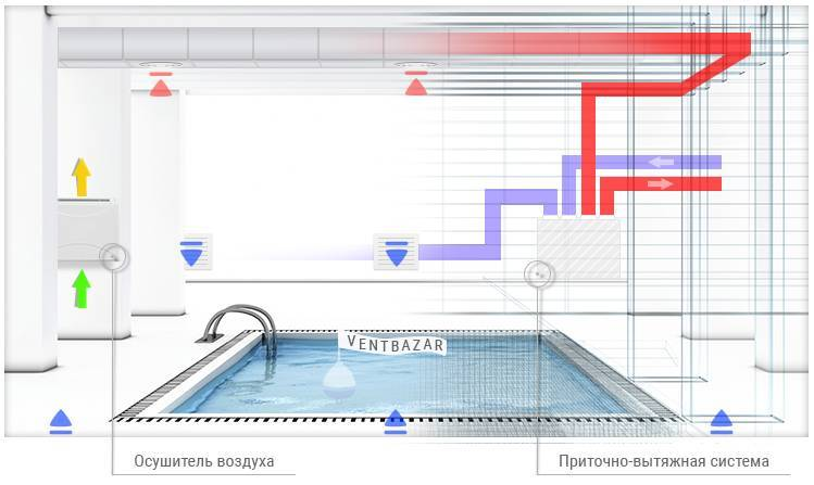 Ошибки, допускаемые начинающими аквариумистами при установке и запуске аквариума (часть 1)