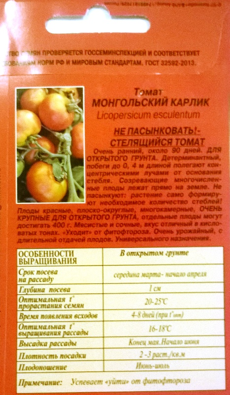 Томат монгольский карлик: описание оригинального сорта народной селекции, особенности выращивания, урожайность, отзывы