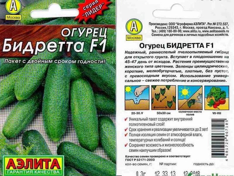 Характеристика гибридного огурца Бидретта f1 и правила выращивания рассадным методом