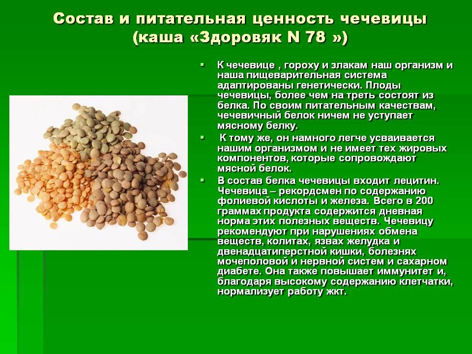Чечевица: польза и вред, свойства, калорийность, рецепты, отзывы