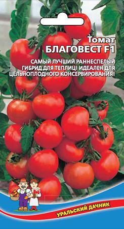 Томат благовест: характеристика, отзывы, урожайность, фото, описание сорта