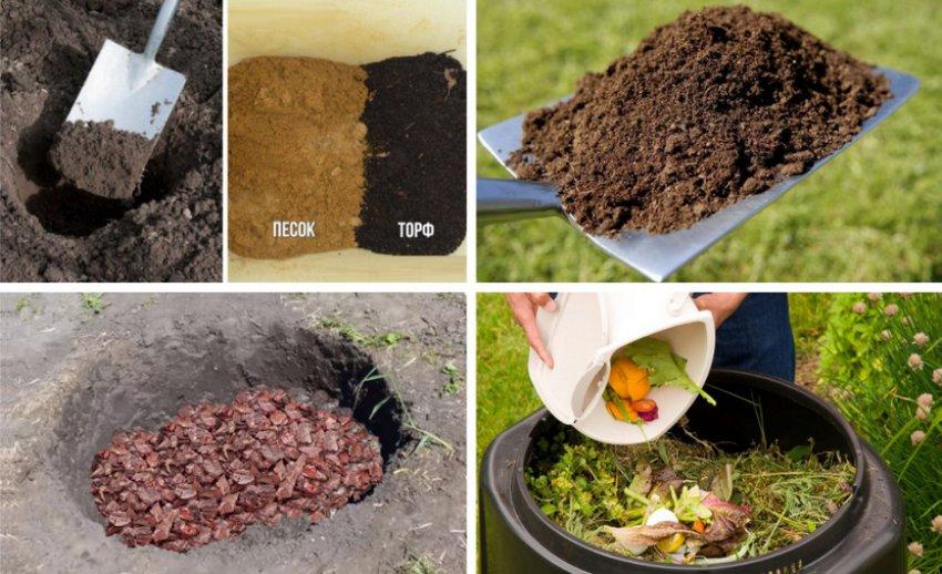 6 материалов для дренажа цветов, которые помогут убрать из горшков лишнюю влагу - ландшафтник