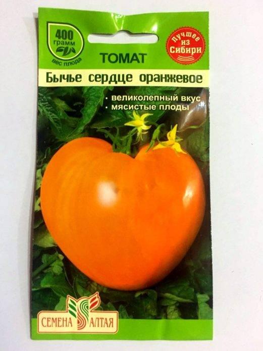 Ретро сорт сердце ашхабада, описание проверенного временем томата, рекомендации по агротехнике и отзывы