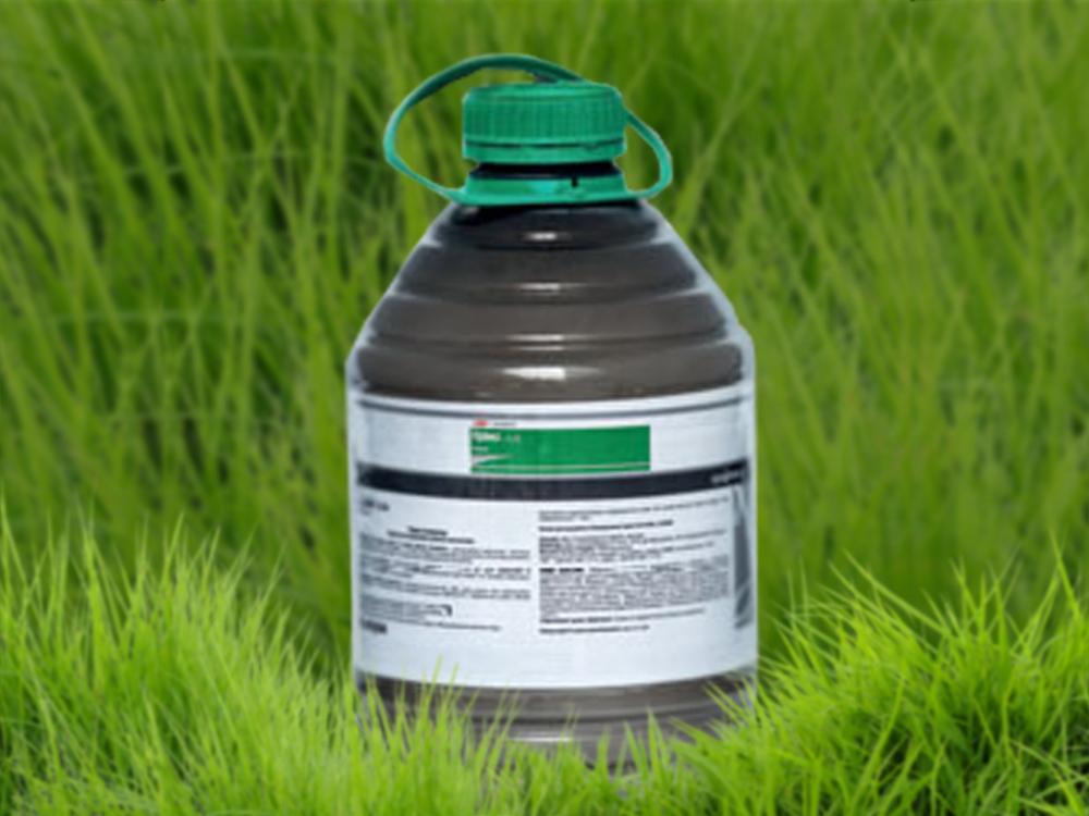 Как можно избавиться от сорняков на газоне гербицидами избирательного и сплошного действия