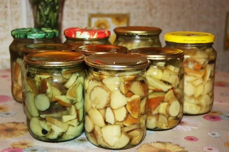 Засолка грибов на зиму: 9 рецептов заготовок в домашних условиях » сусеки