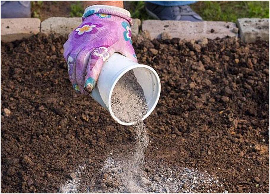 Навоз — лучшее органическое удобрение . как применять? описание, виды, нормы внесения. перегной, фото — ботаничка.ru