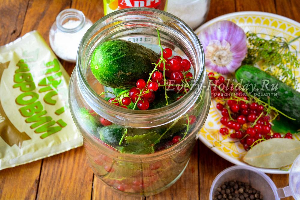 Огурцы с красной смородиной на зиму - рецепты от лучших мастеров консервации